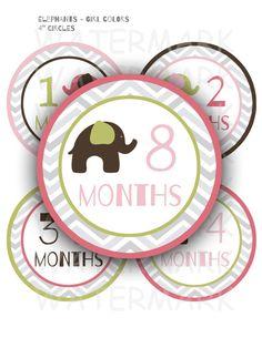 Elephant Baby Girl Monthly Milestone Printable Stickers