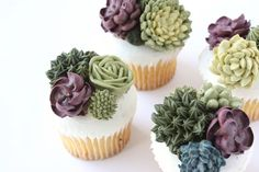Eat Cake Be Merry - Buttercream Succulent cupcakes Pretty Cakes, Beautiful Cakes, Amazing Cakes, Deco Cupcake, Cupcake Cakes, Cupcake Party, Birthday Cupcakes, Succulent Cupcakes, Cactus Cupcakes