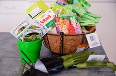 Dollar Store Gardening…. Dollar Stores, Mori Girl, Planting Flowers, Fungi, Saving Money, Home And Garden, Mushrooms, Thrift Stores