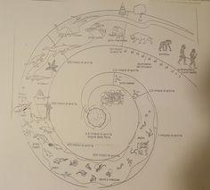 Comparsa prime forme di vita Bigbang, Elementary Schools, Back To School, Vintage World Maps, History, Montessori, Geography, Environment, Primary School