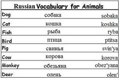 Russian Vocabulary Words for Animals - Learn Russian