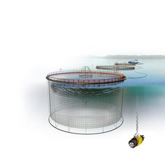 "https://flic.kr/p/9pDo8N | AKVA group Polarcirkel Plastic Cages Illustration | This photo can be downloaded and reproduced under the <b><a href=""http://www.flickr.com/photos/akvagroup/sets/72157624526525901//"">Terms of Use</a>. To download, click the ""View All Sizes"" under the ""Actions"" button above the photo.  </b>"