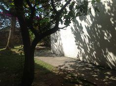 muro nicho patio sombras