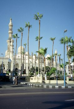 Egypt - Alexandria - 20-01. A mosque near the city centre.