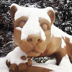 PENN STATE – CAMPUS – Nittany Lion Shrine blanketed in snow at University Park