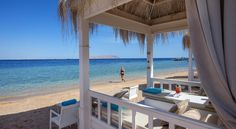 Located along with its private beach in the famous area of Sharks Bay, the SUNRISE Arabian Beach Resort is surrounded by gardens and offers a variety of. Sharm El Sheikh, Luxor, Beach Resorts, Pergola, Sunrise, Hotels, Outdoor Structures, Water, Travel