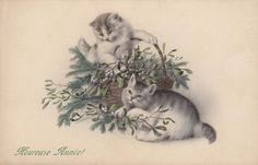 Antique French New Year kittens postcard