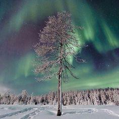 Northern lights auroras