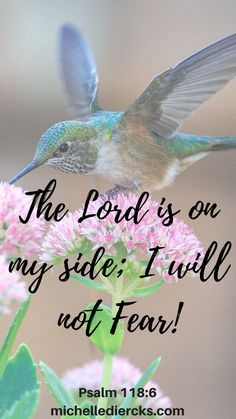 Do you struggle with fear? Check out my Fear Not Bible Reading Plan/challenge, bible verse, bible quote, fear, worry, anxiety