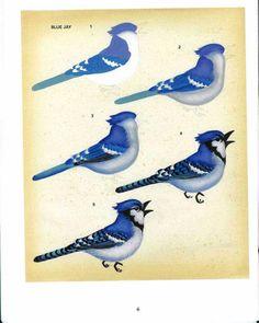 Pássaro azul tutorial