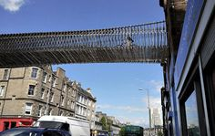 Biomorphis Unveils Plans for a Green Timber Bridge to Inspire Bicycling and Biodiversity in Edinburgh