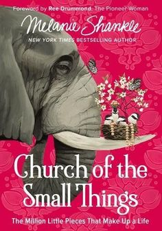 Church of the Small Things: The Million Little Pieces Tha... https://www.amazon.com/dp/0310348870/ref=cm_sw_r_pi_dp_x_hZgdAb1PBA21V