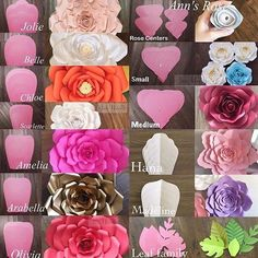 Modelos de flores gigantes de papel - Giant flower template and what the flower looks like Giant Paper Flowers, Diy Flowers, Fabric Flowers, Wedding Flowers, Paper Wall Flowers Diy, Paper Flowers How To Make, Flowers Decoration, Happy Flowers, Flower Petals