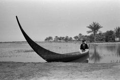 View of Wilfred Thesiger's tarada (sheikh's canoe), with its prow prominent in the foreground, in which Hasan bin Manati, one of Wilfred Thesiger's canoe-boys, is sitting. 1956