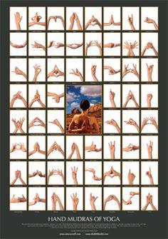 Workout Challenge Discover Mudras of Yoga - Poster Shakti Bhakti Mudras of Yoga - Poster Shakti Bhakti Hand Mudras, Yoga Bewegungen, Les Chakras, Pranayama, Qigong, Yoga Inspiration, Reiki, Yoga Fitness, Yoga Poses