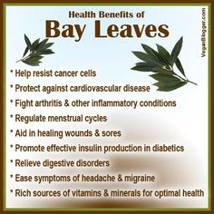More information on bay leaves . More information on bay leaves . Healthy Herbs, Healthy Tips, Healthy Eating, Healthy Drinks, Healthy Foods, Bay Leaf Tea Benefits, Saffron Benefits, Natural Cures, Natural Healing