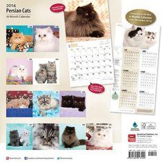 Chat Web, Cat Calendar, Persian, Cats, Calendar, Gatos, Persian People, Persian Cats, Cat