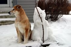 Jeffrey guarding along side the snow squirrel