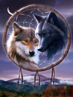 White Wolf : The Legend of the Dreamcatcher