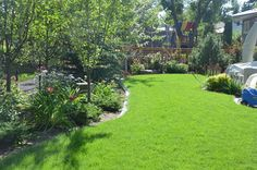 Lakeview - transitional - landscape - calgary - Prairie Outpost Garden Design INC.