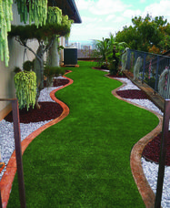narrow lawn using artificial turf xeric landscaping - Backyard of Home - Back Gardens, Small Gardens, Landscape Design, Garden Design, Turf Installation, Synthetic Lawn, Narrow Garden, Ground Cover Plants, Artificial Turf