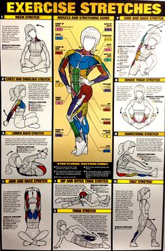 Exercise Stretch