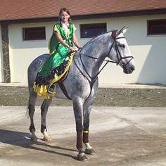 Instagram media by podolskaya_anna - Наш мальчик участвовала в турнире... #соревнования #конкур #лошади #спорт #россия #новороссийск #раевская #конь #осень #октябрь #horse
