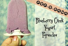 Blueberry greek yoghurt popsicles - blueberry's, greek yohurt and honey