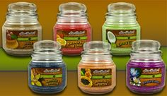 Colección Latina - Our line of candles featuring our most popular scents with a Spanish label. Get them. Here's where. http://www.itmakesscentz.scent-team.com/products/candles.php