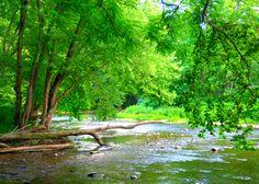 Beaver Creek State Park, OH