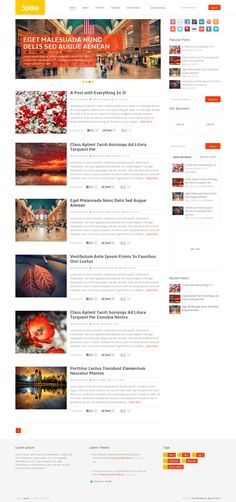 Spike, WordPress Premium Simple Magazine Blog Theme
