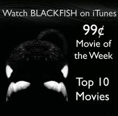 Must see movie!