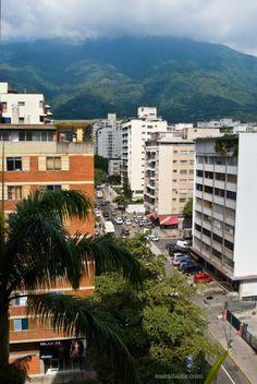 Mami Talks™: Los Palos Grandes, Caracas, Venezuela