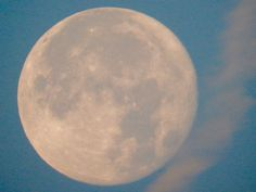 Supermoon from Canada and around the world | CTV News