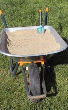 Tipps gegen Algen im Rasen -  Algen werden in niederschlagsreichen Sommern im Rasen schnell zum Problem. Sie siedeln sich vor allem auf schweren, undurchlässigen Böden an, da sich die Nässe hier lange in der oberen Bodenschicht halten kann.