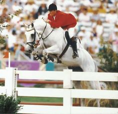 Jos Lansink's famous Carthago Z passes away due to old age. The stallion enjoyed an illustrious show jumping career winning many Grand Prix as well as competing in 15 Nation's Cups, the '96 Atlanta & Sidney Olympics. A proven sire of champion show jumpers at the highest level & has over 900 registered offspring. RIP