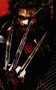 Wolverine by Francesco Mattina