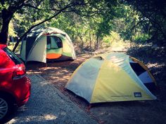 Report from Orient, Texas: It's a very curious human thing how you can turn a place into home and get settled in so quickly, even if you move your campsite three times. We had such a beautiful time rehearsing under the trees, working on the bootleg CDs, sewing, cooking, and getting used to our neighbor - a very busy armadillo who peeked into our sleeping tent just to make sure we were all tucked in, I suppose. She was very calm and practically walked over my foot once in order to root around…