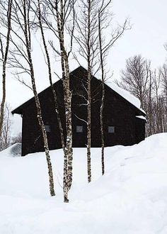 This has hot cocoa written all over it.  One concern.  I don't see a chimney in which case I should nix the re-pinning of this pic.  It's just so pretty though.  Let's just pretend :).  [PS Arkitektur Fjällhus in Sweden]