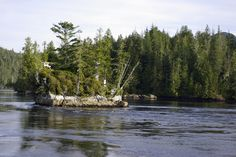 nakwakto-rapids-tremble-island Places To Go, River, Island, Outdoor, Outdoors, Islands, Outdoor Games, The Great Outdoors, Rivers