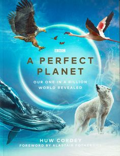 Global Weather, Arctic Wolf, Save Our Earth, Bbc Tv Series, Earth Surface, History Museum, Global Warming, Natural History, Wonders Of The World