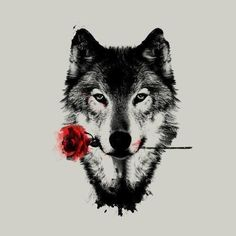 Rose / wolf #drawing #art #nature #rose #wolf