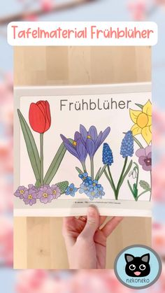 Classroom Board, Classroom Posters, Perfect Image, Perfect Photo, German Resources, Pre School, Spring Flowers, Kids And Parenting, Elementary Schools