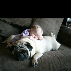 So sweet...everyone needs a dog