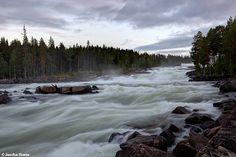 Storforsen waterfall Sweden nature waterval