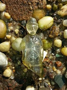 WOW.. this is an awesome piece of sea glass!!! Wish he were mine!!