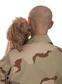 20 Best Scientific Studies on Dogs - Top Dog Tips