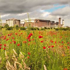 the steel works Scunthorpe