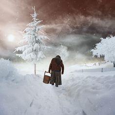 35PHOTO - Caras Ionut - Winter enclosure