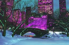 New-York City Central Park At Night